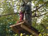 Escalade d'arbres