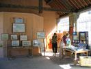 Exposition sous les Halles