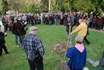 L'arbre commémoratif : un Liquidambar