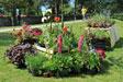 Marché du terroir et des plants