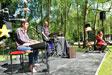 Cheval Vapeur dans le parc public